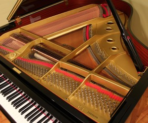 Virtue And Vice Yamaha c3 Grand Piano